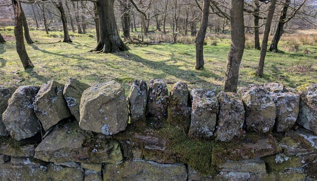 drystone-wall-2643480_640